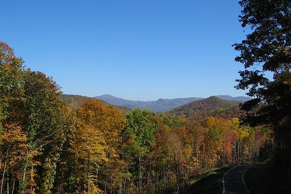 poplar ridge community